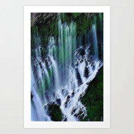 McArthur-Burney Waterfall Landscape Art Print
