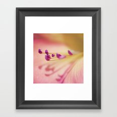 Shadows from the Pale Framed Art Print