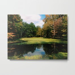 Pond #232 Metal Print