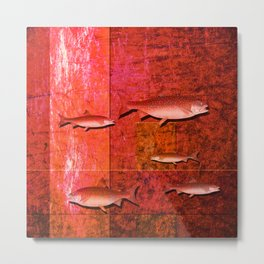 Coral Shadows, Swimming Fish Metal Print