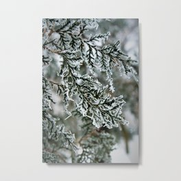 Winter pattern Metal Print