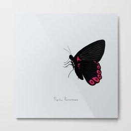 Sad butterfly Metal Print