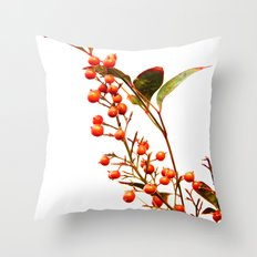 A Fruitful Life Throw Pillow
