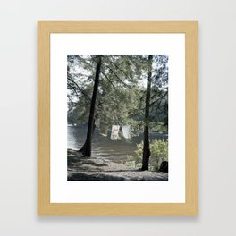 Carousel 24 Framed Art Print