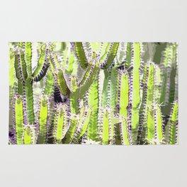 Cactus of desert plants Rug