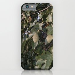 October Leaves Up Close iPhone Case