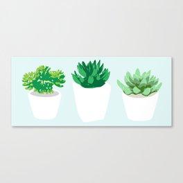 Succulent Windowsill-- Botanical & Floral series Canvas Print