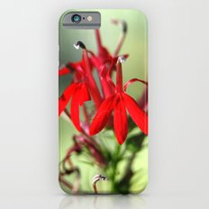 Cardinal Flower Slim Case iPhone 6s