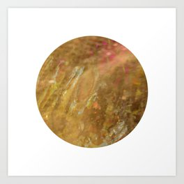 Within Earth Art Print