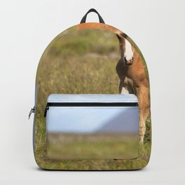 Watercolor Horse 29, Icelandic Pony, Höfn, Iceland, Ready or Not! Backpack
