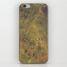 Miniature Madagascar iPhone & iPod Skin