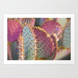 Blue and Purple Cactus Art Print