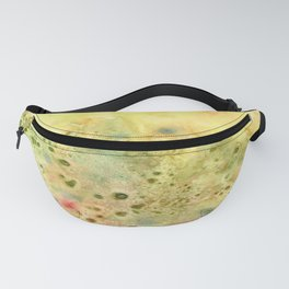Jeweled Pebbles Fanny Pack