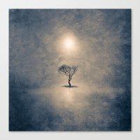 the shining Canvas Prints featuring shining by Viviana Gonzalez