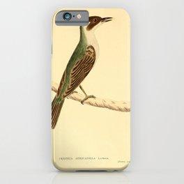 Vintage Print - The Austral Avian Record (1912) - Treecreeper iPhone Case