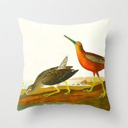 Red-breasted Snipe Bird Throw Pillow