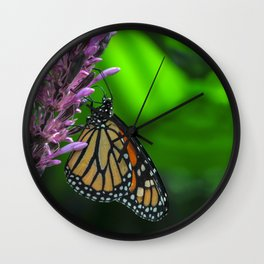 Monarch Butterfly on Purple Flower Fine Art Photograph  Wall Clock