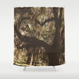 Tree heart in Historic Avadale Jacksonvll Florida Shower Curtain