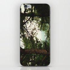 look through iPhone & iPod Skin