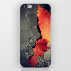 First Frost is Coming soon iPhone & iPod Skin
