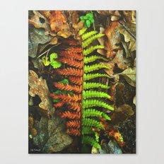 hard choise Canvas Print