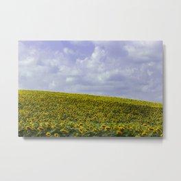 Field of Happiness - Sunflowers  Metal Print