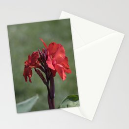 Longwood Gardens - Spring Series 187 Stationery Cards