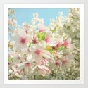 Spring Blossom by cassiabeck