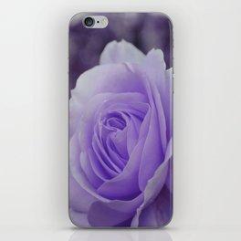 Lavender Rose 2 iPhone Skin