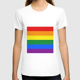 Rainbow color . T-shirt