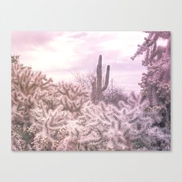 Prickly in Pink Canvas Print