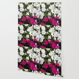 Patient Impatiens - Deep Pink and Sparkling White Wallpaper