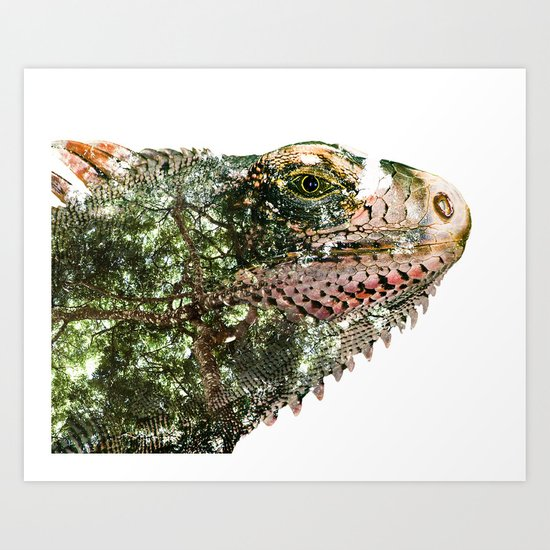 Tropical Iguana Art Print