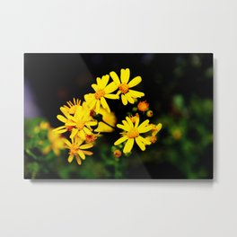 Bright Yellow Wildflowers Metal Print