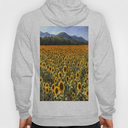 Sunflower Fields Of Dreams Hoody