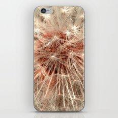 dandelion macro XI iPhone & iPod Skin
