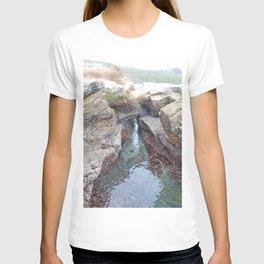 Cove T-shirt