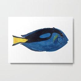 SURGEON FISH Metal Print