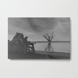 The Dead Tree Lake Metal Print