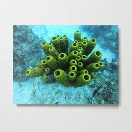 underwater beauty Metal Print