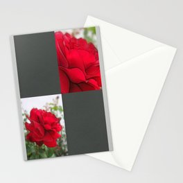 Red Rose Edges Blank Q6F0 Stationery Cards