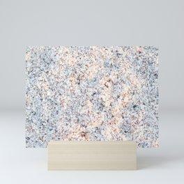 Sanibel Seashells Mini Art Print
