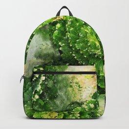 Green Zone Backpack