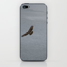 Hawk iPhone Skin