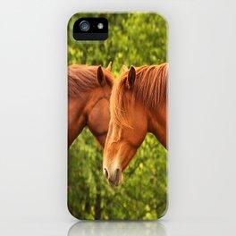 Face to Face - Beautiful Horses  #decor #society6 #buyart iPhone Case