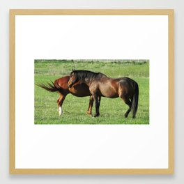 Horses Lovers Framed Art Print