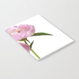 pink peonies Notebook