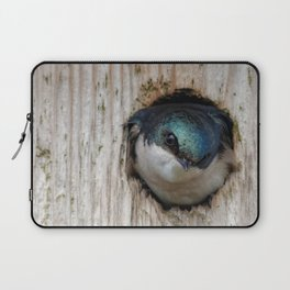Meeting the New Nestbox Homeowner Laptop Sleeve