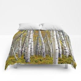 Birch Tree Grove in Autumn Comforters