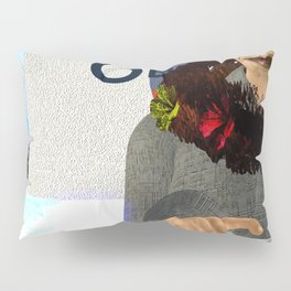 Fly: O is for Care less Pillow Sham